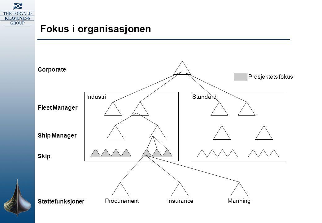 Fokus i organisasjonen