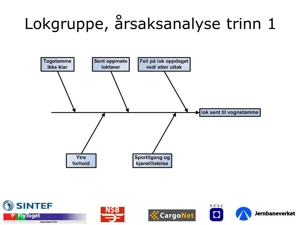 Lokgruppe, årsaksanalyse trinn 1