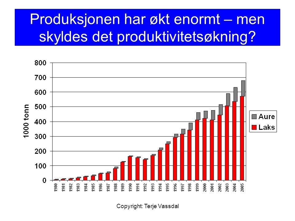 Produksjonen har økt enormt – men skyldes det produktivitetsøkning