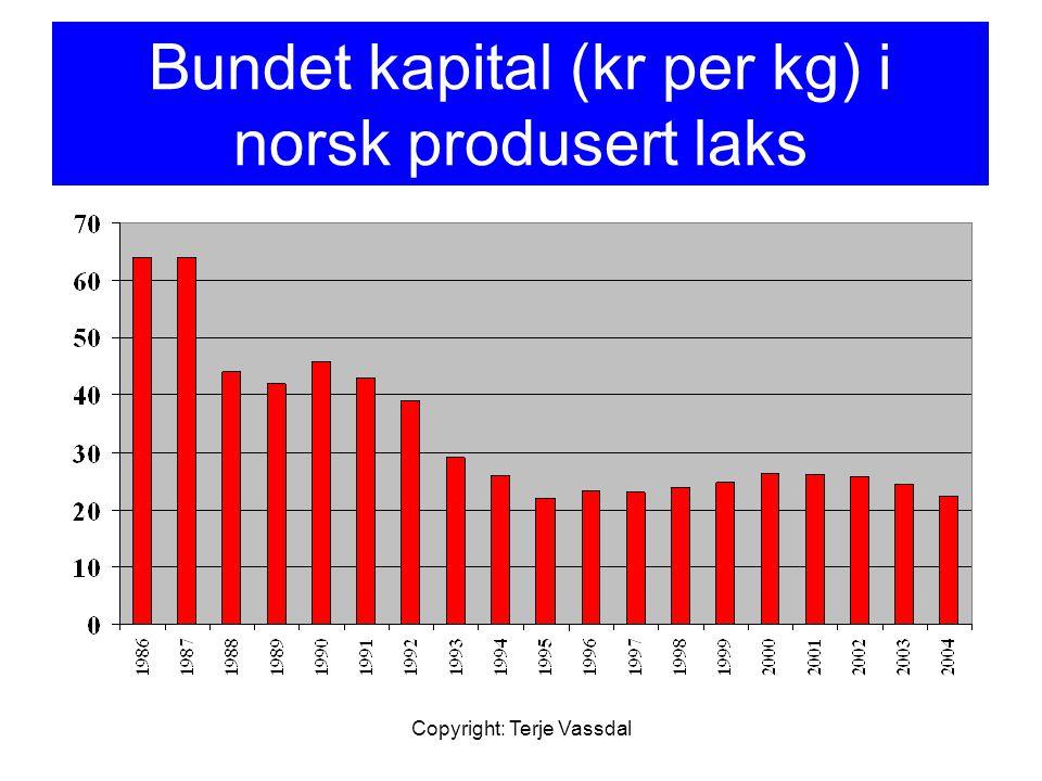Bundet kapital (kr per kg) i norsk produsert laks