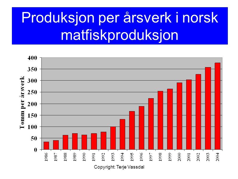 Produksjon per årsverk i norsk matfiskproduksjon