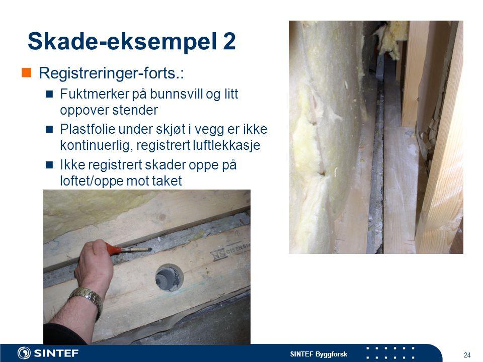 Skade-eksempel 2 Registreringer-forts.: