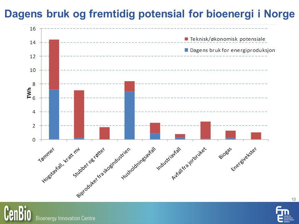 Dagens bruk og fremtidig potensial for bioenergi i Norge