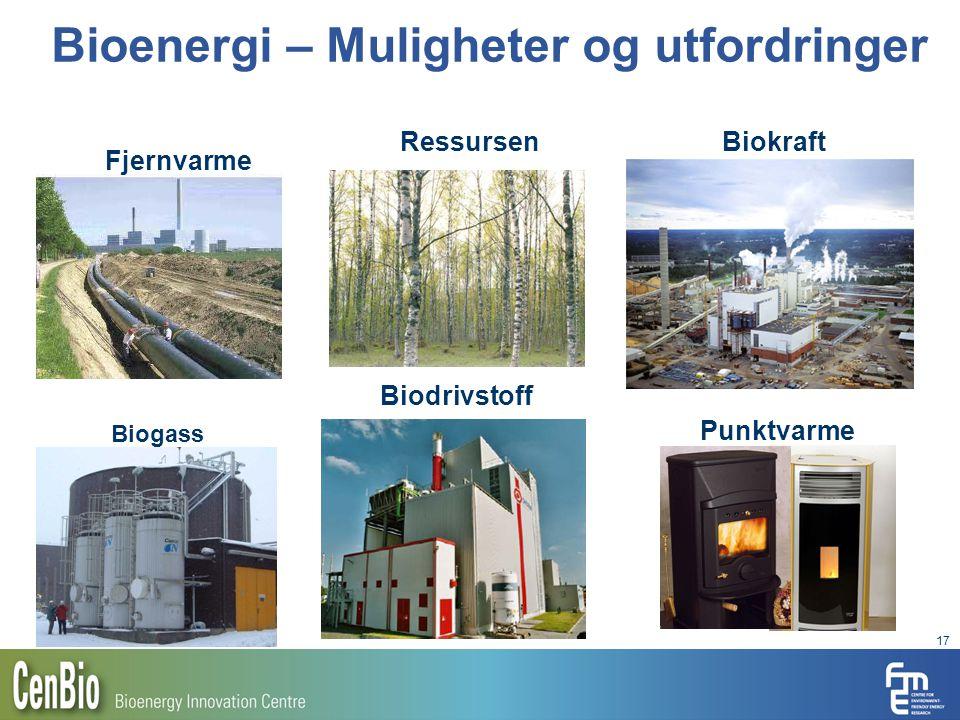 Bioenergi – Muligheter og utfordringer