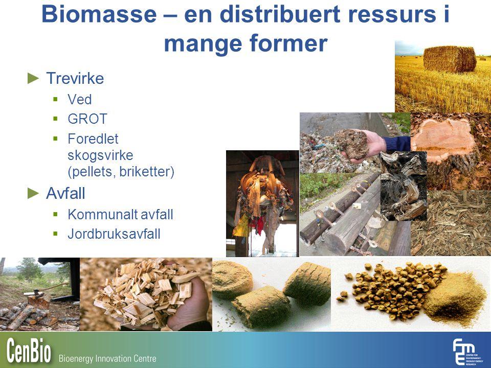 Biomasse – en distribuert ressurs i mange former
