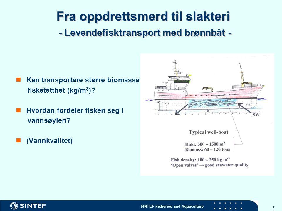 Fra oppdrettsmerd til slakteri - Levendefisktransport med brønnbåt -
