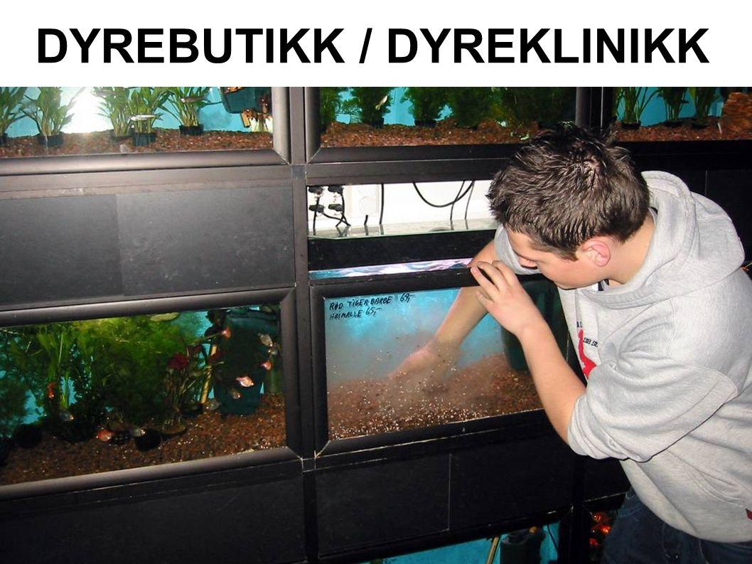 DYREBUTIKK / DYREKLINIKK