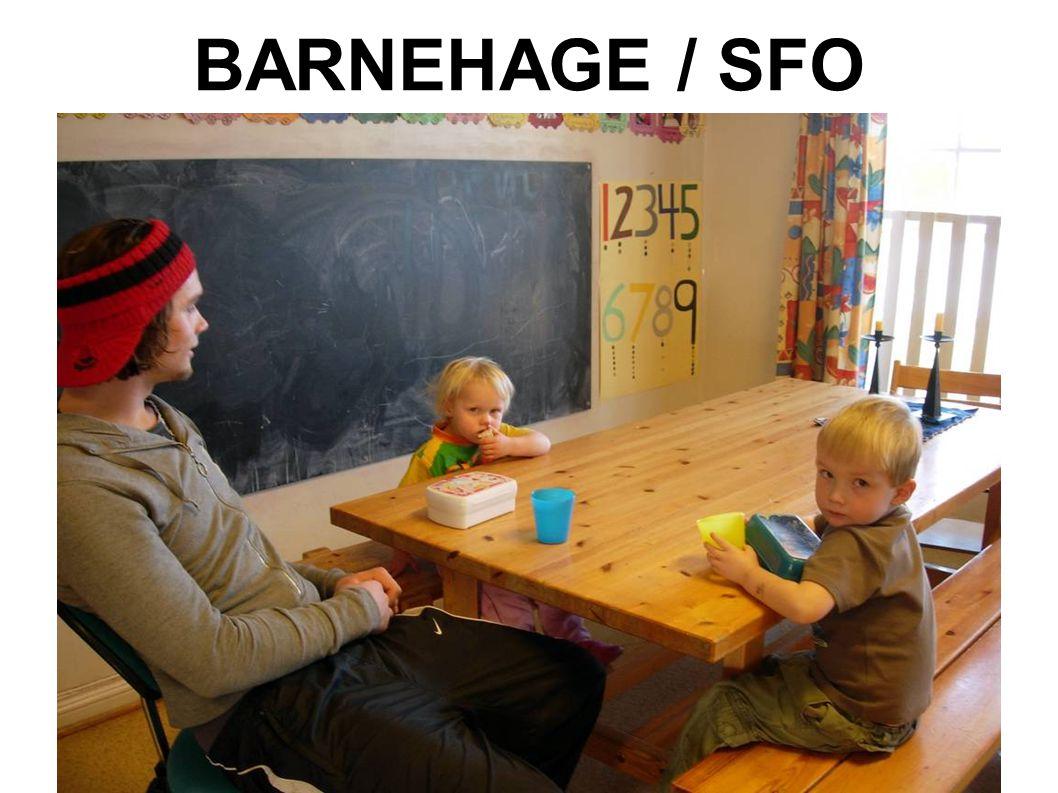 BARNEHAGE / SFO