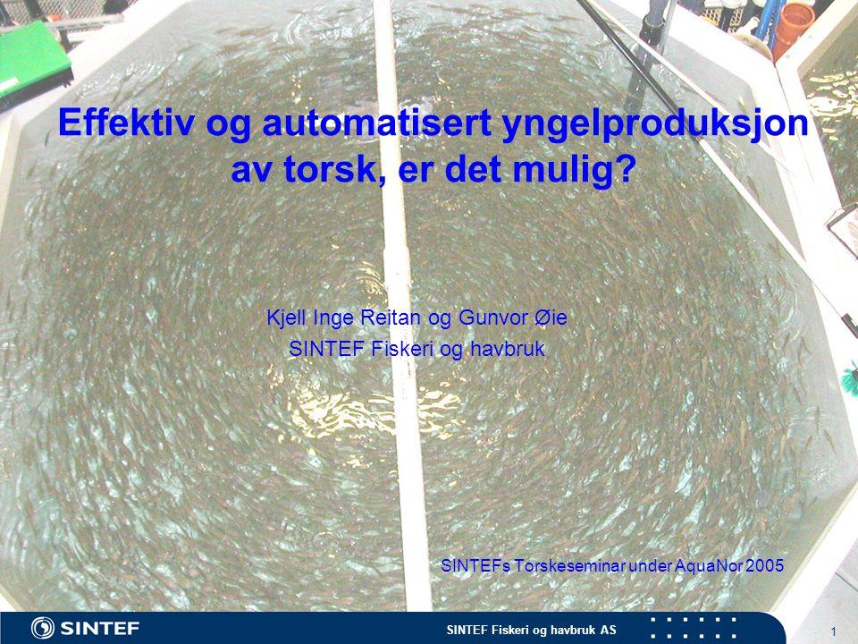 Effektiv og automatisert yngelproduksjon av torsk, er det mulig