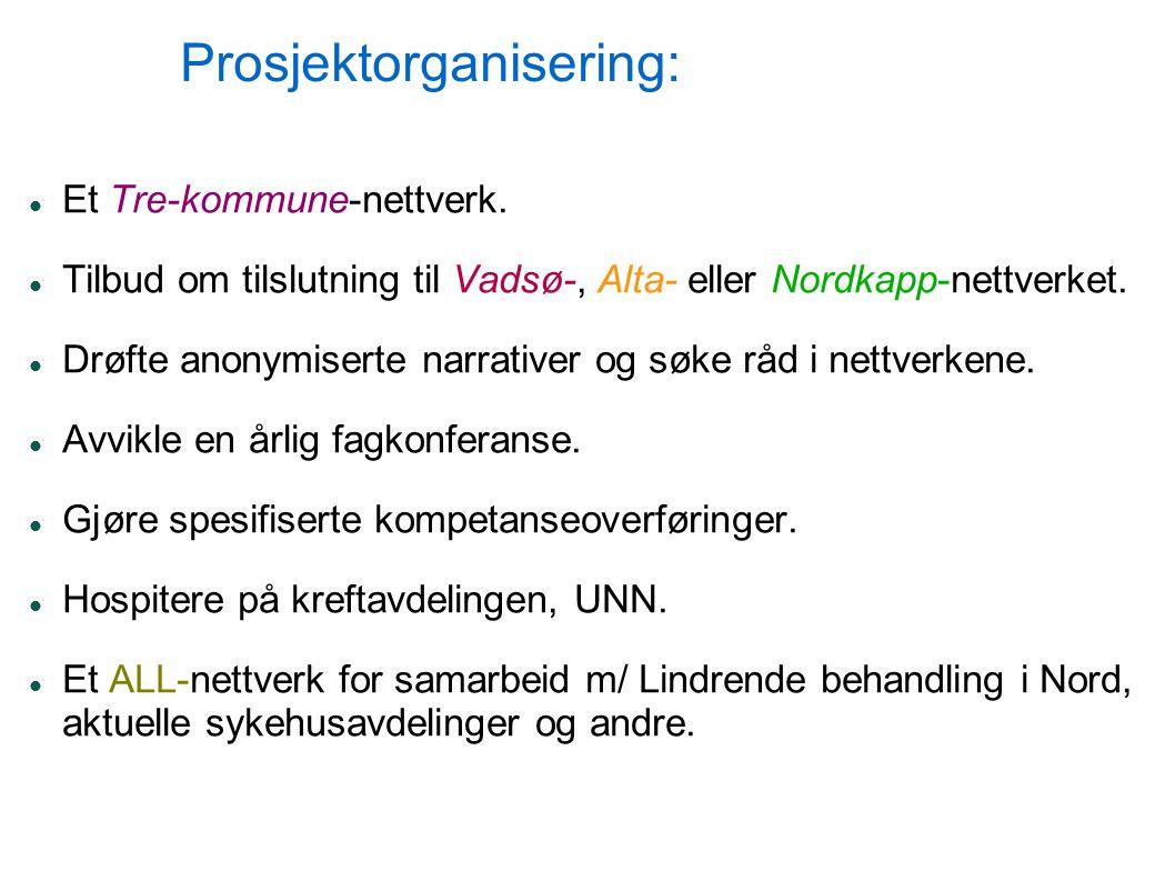 Prosjektorganisering: