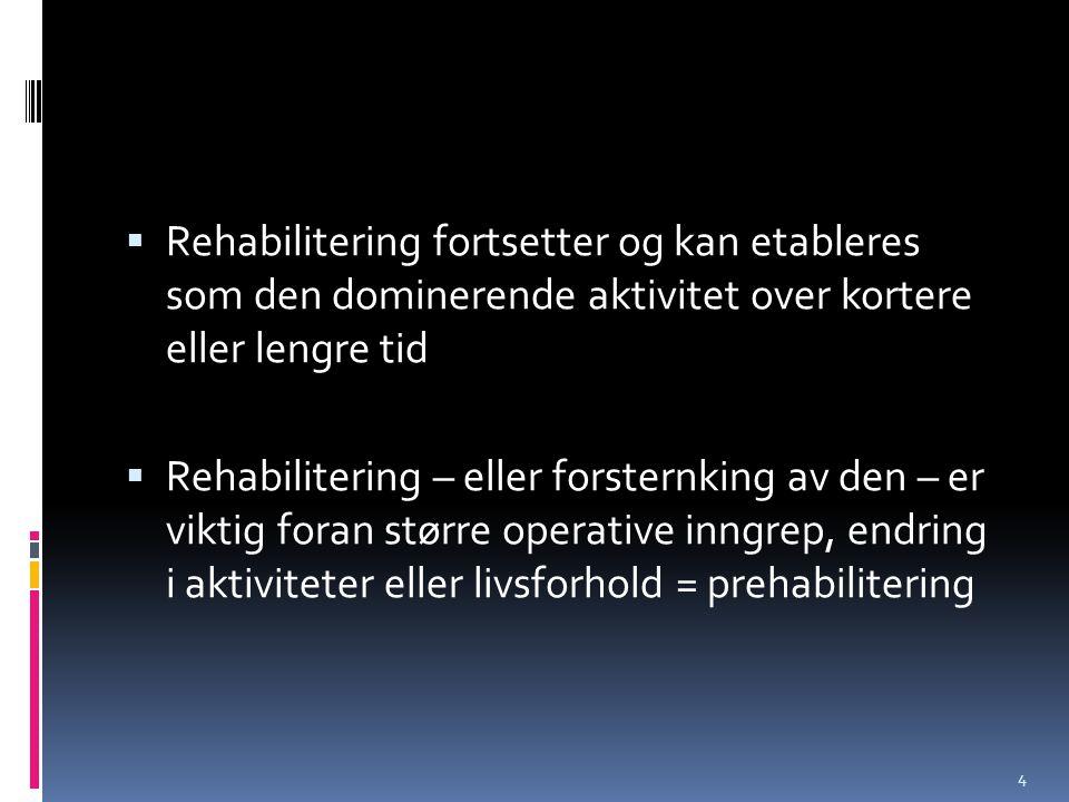 Rehabilitering fortsetter og kan etableres som den dominerende aktivitet over kortere eller lengre tid