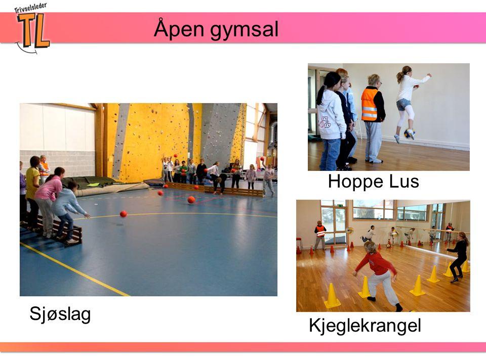 Åpen gymsal Hoppe Lus Sjøslag Kjeglekrangel