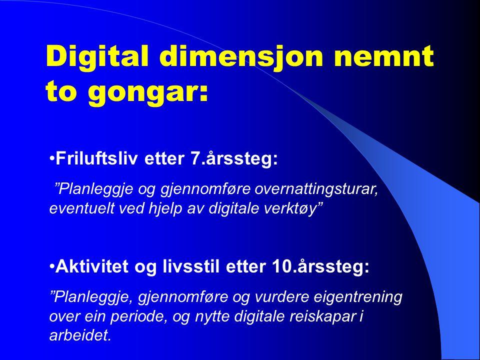 Digital dimensjon nemnt to gongar: