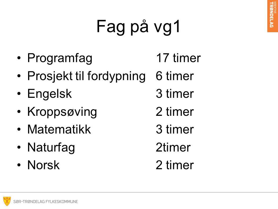Fag på vg1 Programfag 17 timer Prosjekt til fordypning 6 timer