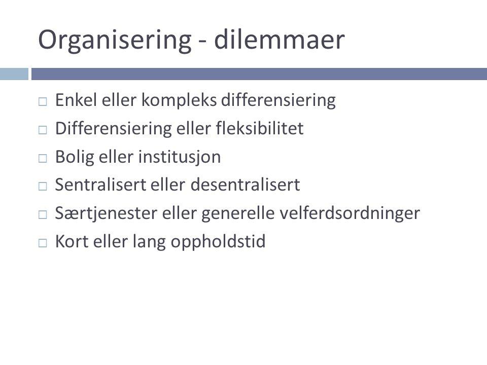 Organisering - dilemmaer