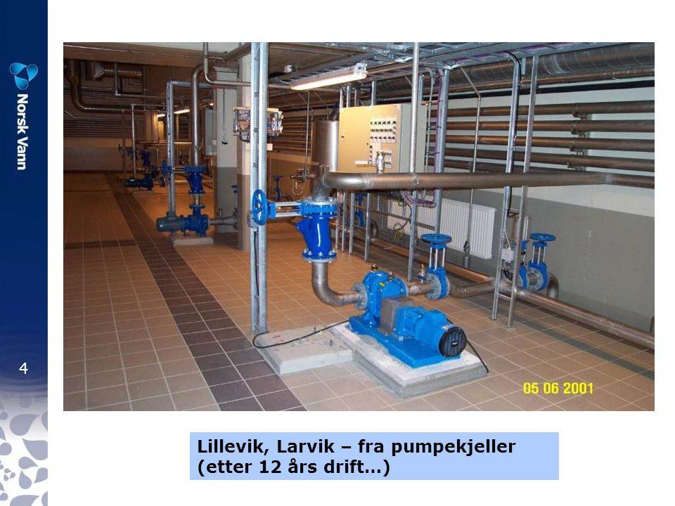 Lillevik, Larvik – fra pumpekjeller (etter 12 års drift…)
