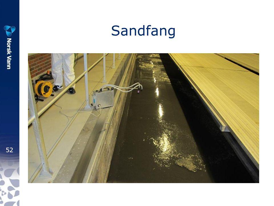 Sandfang