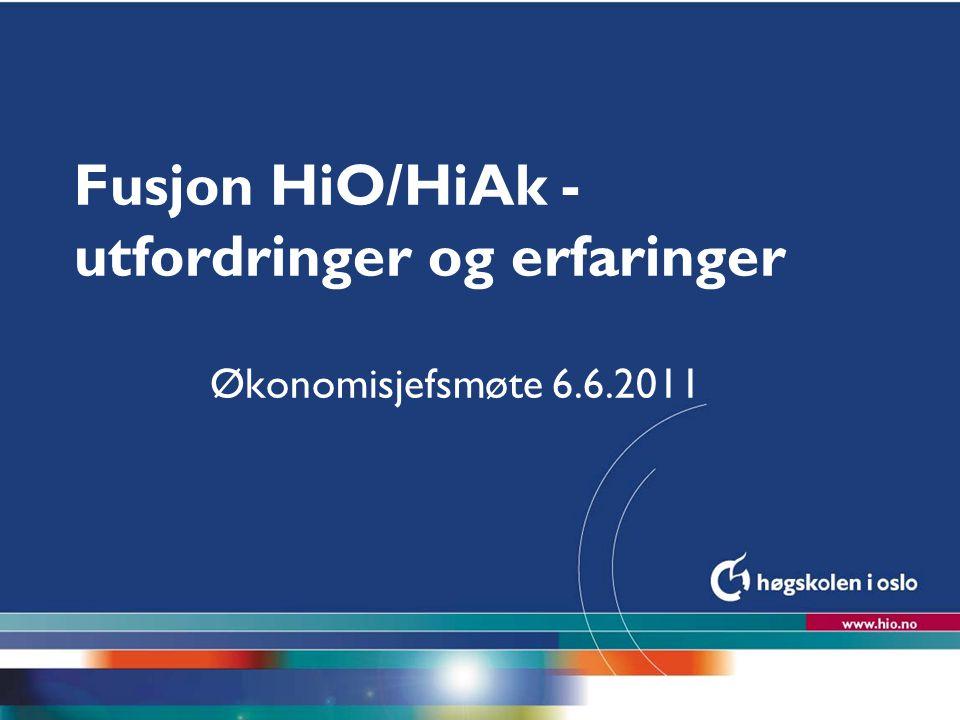 Fusjon HiO/HiAk - utfordringer og erfaringer