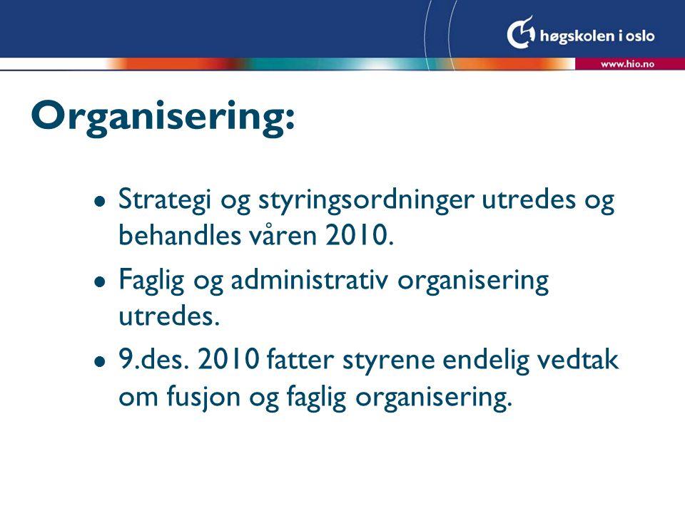 Organisering: Strategi og styringsordninger utredes og behandles våren 2010. Faglig og administrativ organisering utredes.
