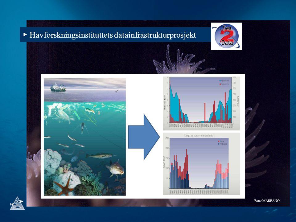 ▶ Havforskningsinstituttets datainfrastrukturprosjekt