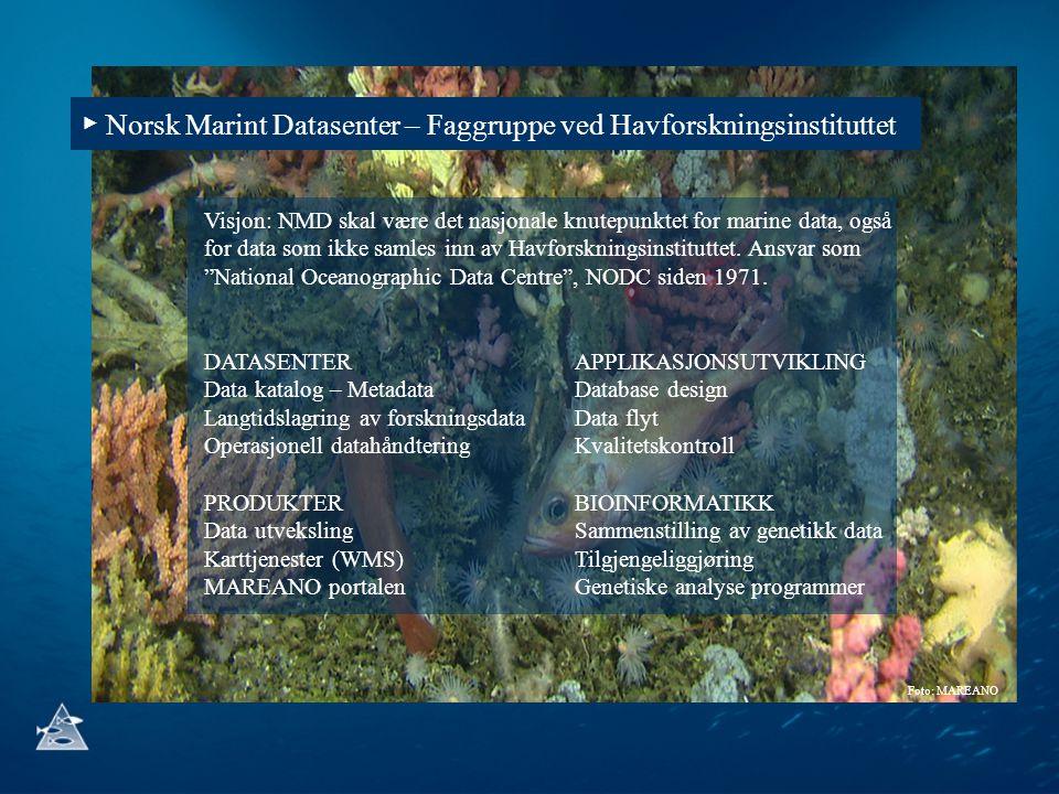 ▶ Norsk Marint Datasenter – Faggruppe ved Havforskningsinstituttet