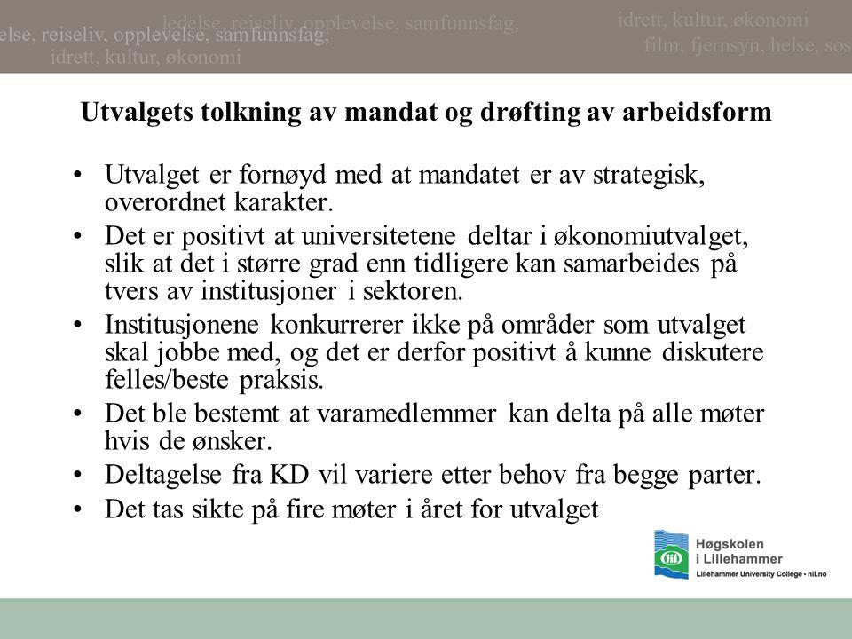 Utvalgets tolkning av mandat og drøfting av arbeidsform