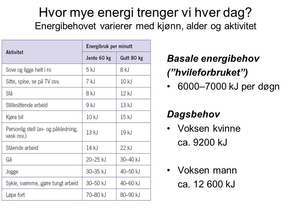 Hvor mye energi trenger vi hver dag