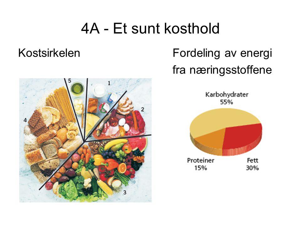 4A - Et sunt kosthold Kostsirkelen Fordeling av energi