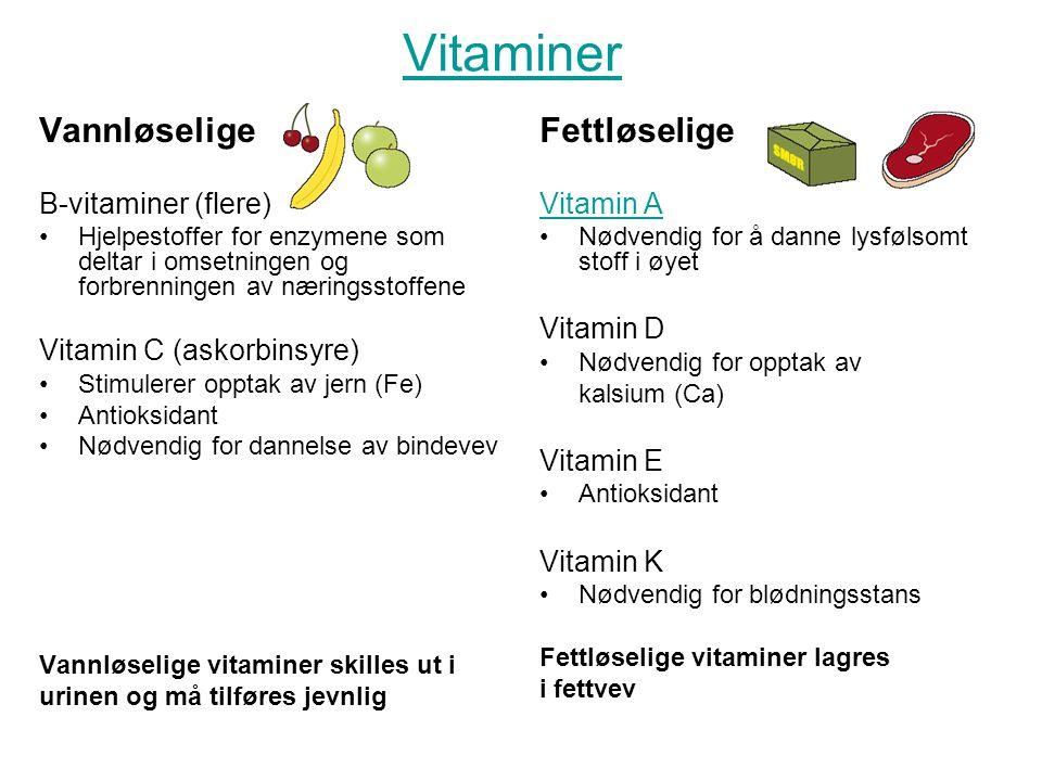 Vitaminer Vannløselige Fettløselige B-vitaminer (flere)