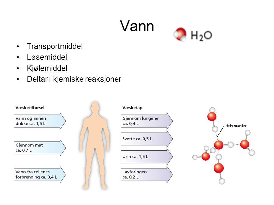 Vann Transportmiddel Løsemiddel Kjølemiddel
