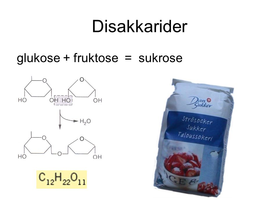 Disakkarider glukose + fruktose = sukrose