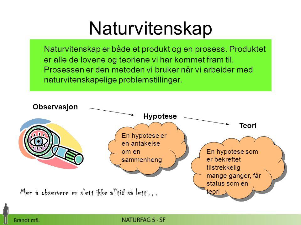 Naturvitenskap