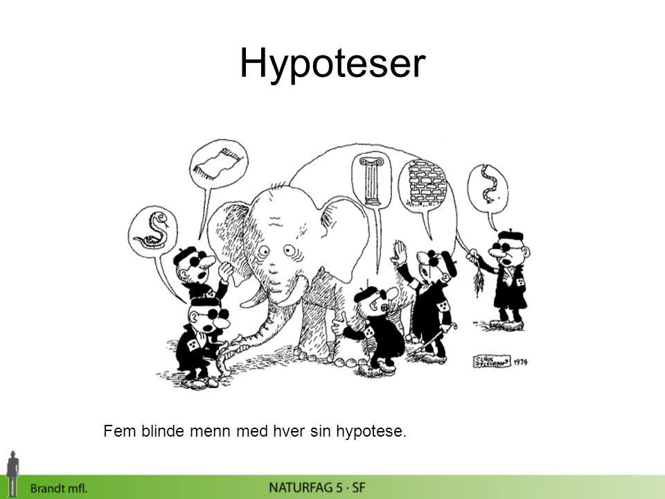 Hypoteser Fem blinde menn med hver sin hypotese.