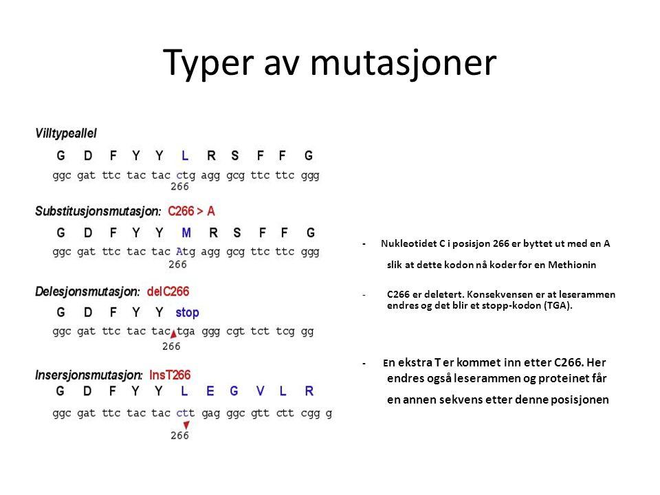 Typer av mutasjoner - Nukleotidet C i posisjon 266 er byttet ut med en A slik at dette kodon nå koder for en Methionin.