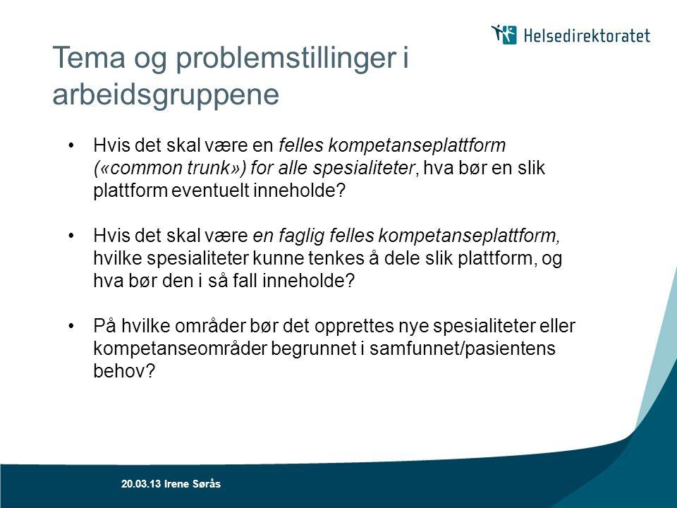 Tema og problemstillinger i arbeidsgruppene