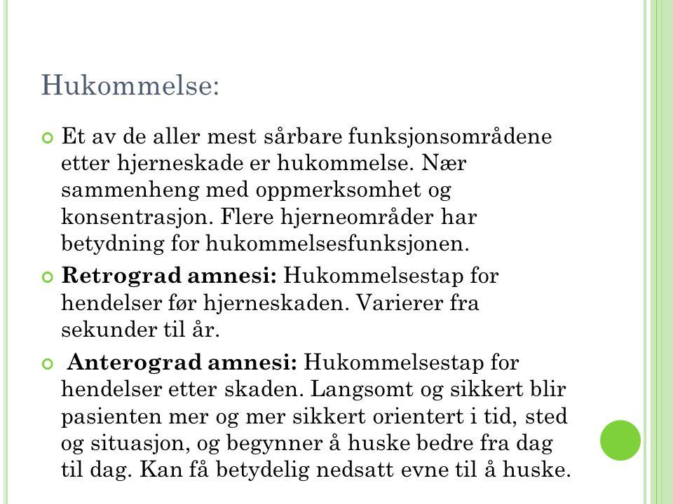 Hukommelse: