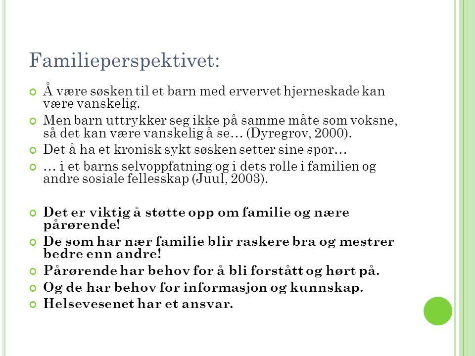 Familieperspektivet: