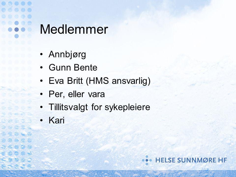 Medlemmer Annbjørg Gunn Bente Eva Britt (HMS ansvarlig)