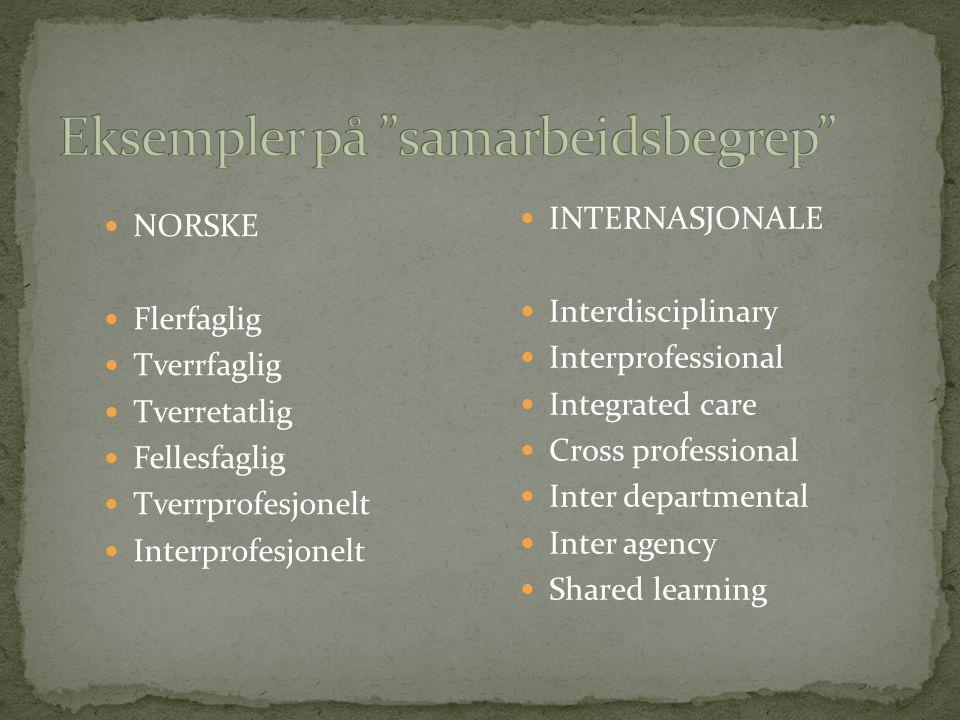 Eksempler på samarbeidsbegrep