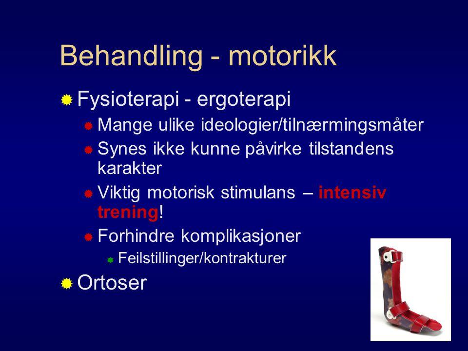 Behandling - motorikk Fysioterapi - ergoterapi Ortoser