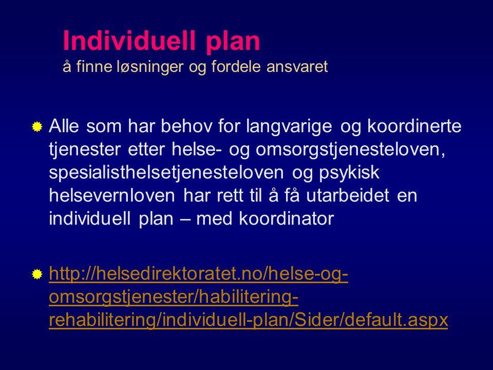 Individuell plan å finne løsninger og fordele ansvaret