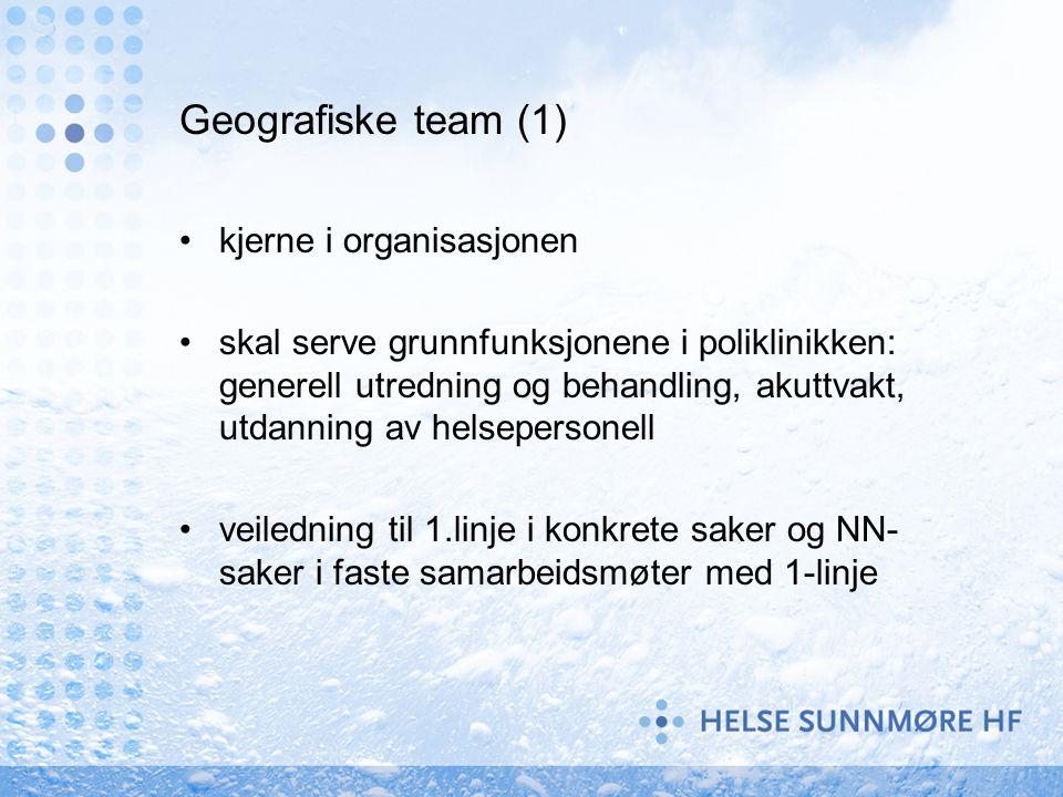 Geografiske team (1) kjerne i organisasjonen