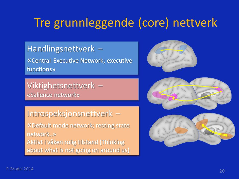 Tre grunnleggende (core) nettverk
