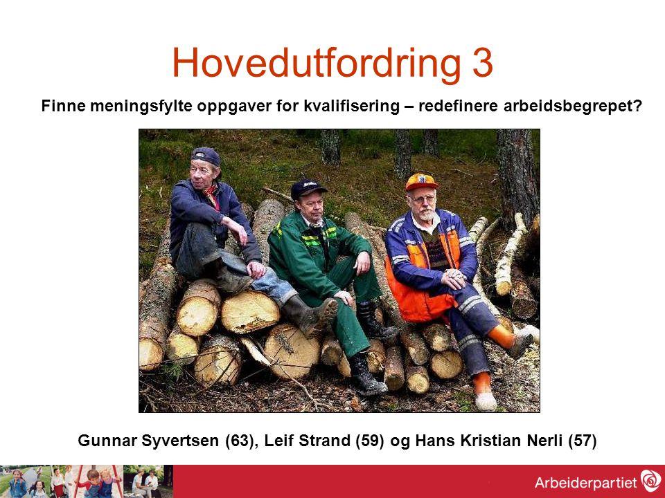 Hovedutfordring 3 Finne meningsfylte oppgaver for kvalifisering – redefinere arbeidsbegrepet