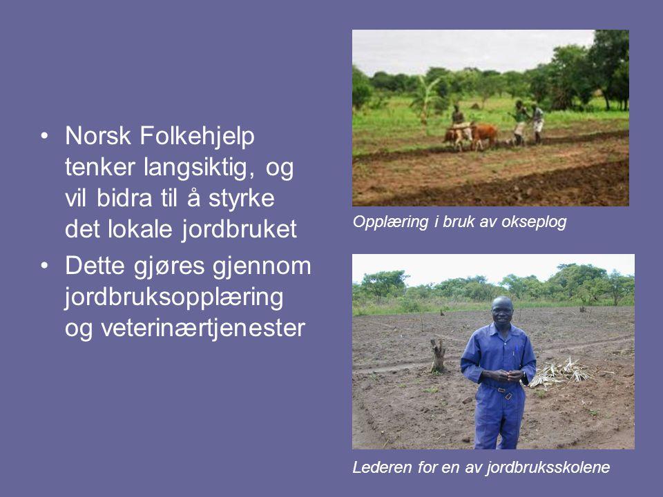 Dette gjøres gjennom jordbruksopplæring og veterinærtjenester