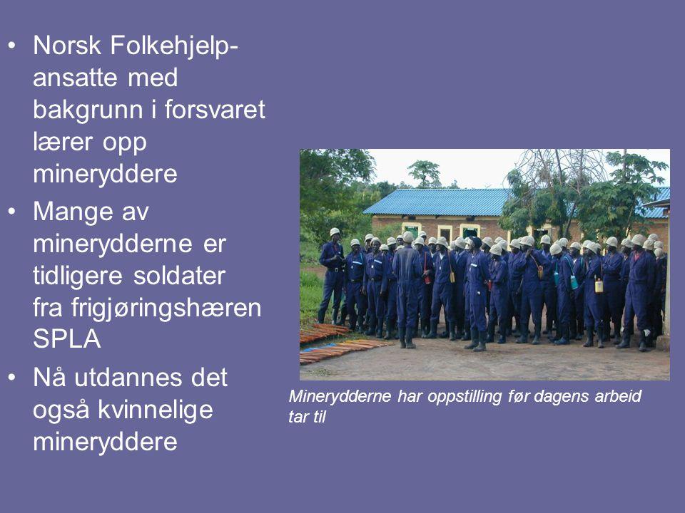 Mange av minerydderne er tidligere soldater fra frigjøringshæren SPLA