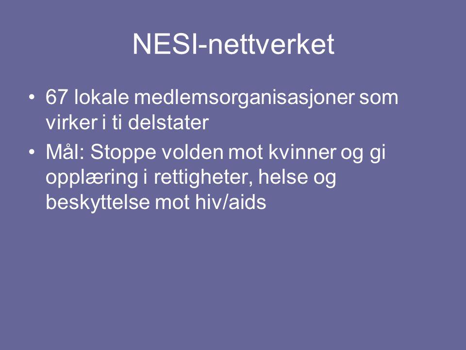 NESI-nettverket 67 lokale medlemsorganisasjoner som virker i ti delstater.