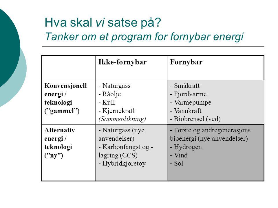 Hva skal vi satse på Tanker om et program for fornybar energi
