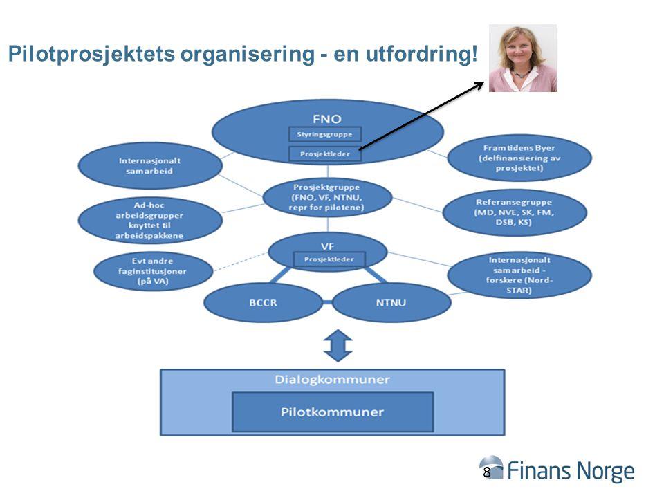 Pilotprosjektets organisering - en utfordring!
