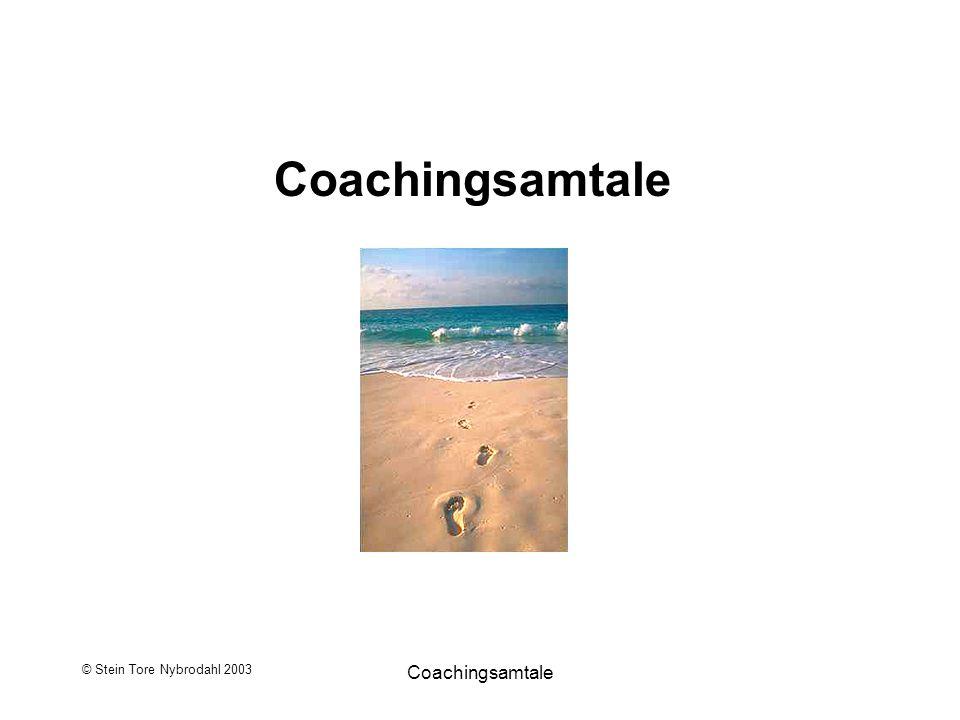 Coachingsamtale © Stein Tore Nybrodahl 2003 Coachingsamtale